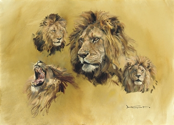 Lions' heads