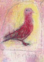 Hen-Bird, Kells
