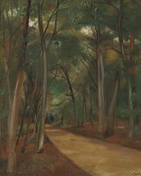 Chemin en forêt de Fontaineble