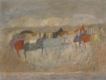 Cavalli in Dalmazia