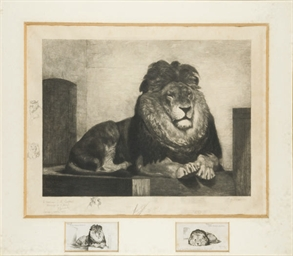 Punch le Lion