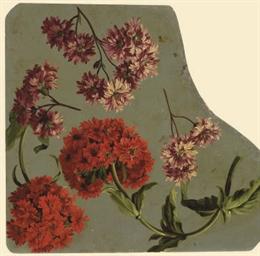 Chrysanthèmes mauves et Lychni