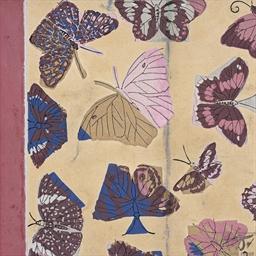 Papillonnage (maquette pour un