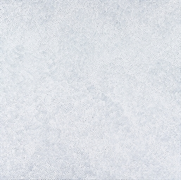White Nets (HWTOQ)
