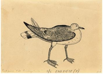A Peculiar Gull