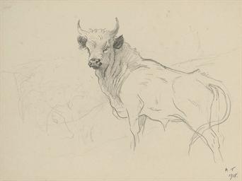 Study of a standing Cadzow bul