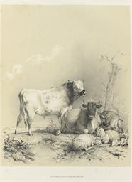 COOPER, Thomas Sidney (1803-19