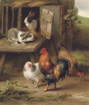 Hens and a cockerel with rabbits