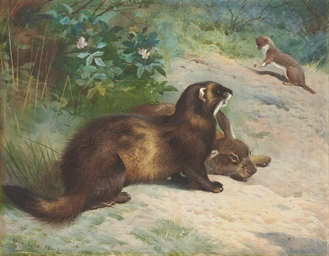 A polecat, a rabbit and a stoa