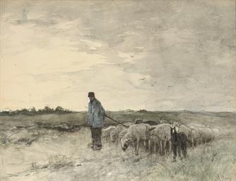 Grijze dag: a shepherd and his