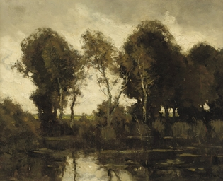 Trees along a pond