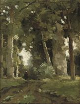 A figure on a wooded path in a forest