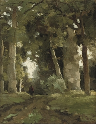 A figure on a wooded path in a