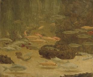 Goudvissen: a shoal of goldfis