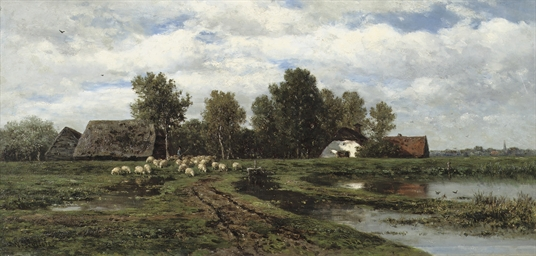 Sheep in a polder landscape