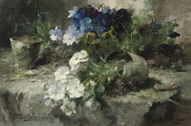 White and blue violets