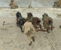 Novemberdag te Scheveningen: working horses on the beach of Scheveningen