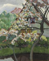 Cerisier en fleurs a Hambourg:
