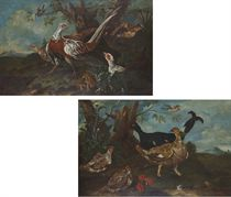 Pheasant in a landscape; and A pheasant and other birds