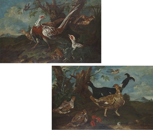 Pheasant in a landscape; and A