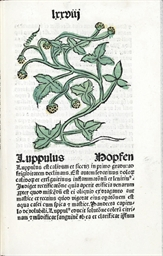 [HERBAL]. Herbarius Latinus (w