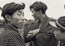 Young Men, Niida, Akita City, 1952