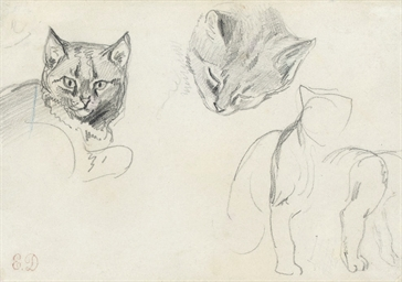 Two studies of a cat's head, w