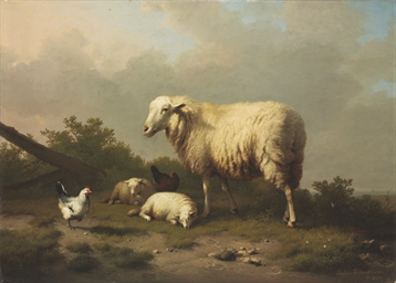 Sheep and chickens in a pastur