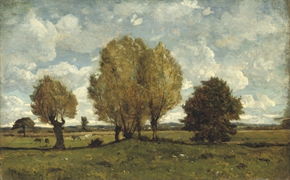 A meadow landscape