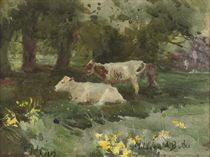 Cattle in the shade, Kilmurray