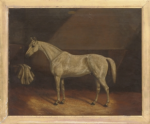 A grey race horse in a stable