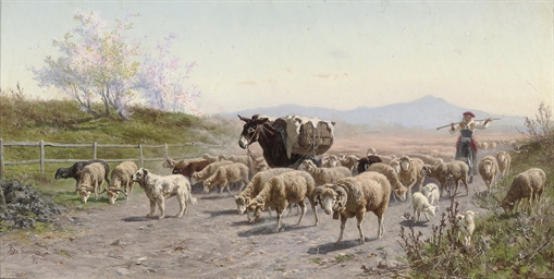 Herding sheep through the Roma