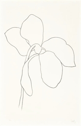 Cyclamen III, from Suite of Pl