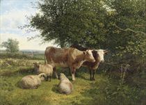 Cattle and sheep grazing in a summer landscape