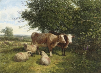 Cattle and sheep grazing in a