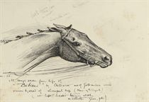 An album of drawings and watercolours, the majority equestrian studies including: A sketch from the life of Bibiani (illustrated); Studies of dogs; and Studies of tack