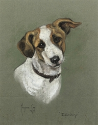 Study of the Jack Russell 'Ben