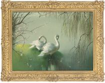 Swans beside a lake