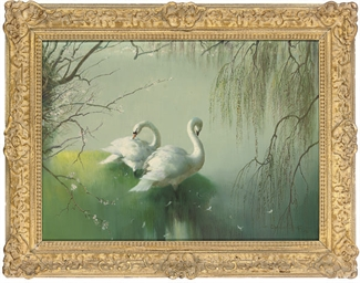 Swans beside a lake