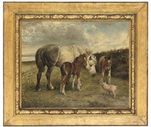 A farmyard conversation