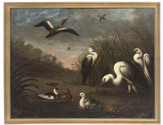 Ducks and herons in a reeded r