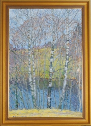 Birch trees by the water