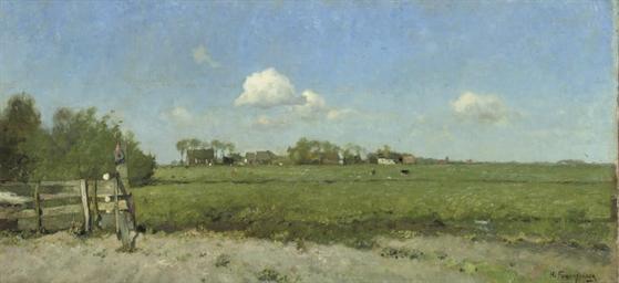 An extensive polder landscape