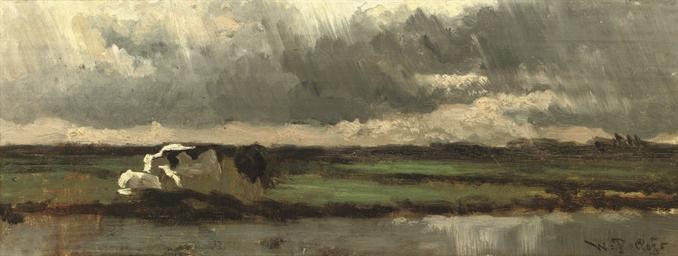Meerkerk: an approaching rain