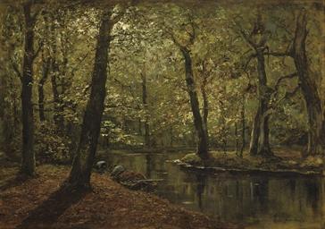 Boschvijver: a forest in autum