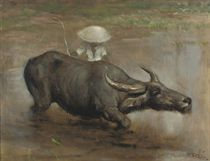 A Waterbuffalo Working the Sawah