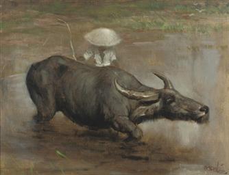 A Waterbuffalo Working the Saw