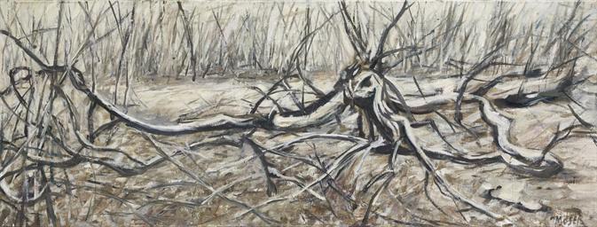 Unterholz, 1981