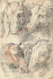 Five studies of a horse's head