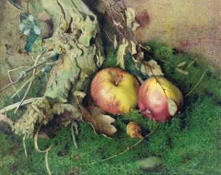 Still life of apples, a tree s